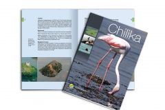 Brochure-Chilika