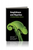 Pub-Amphibians